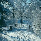 verkehrt_winter